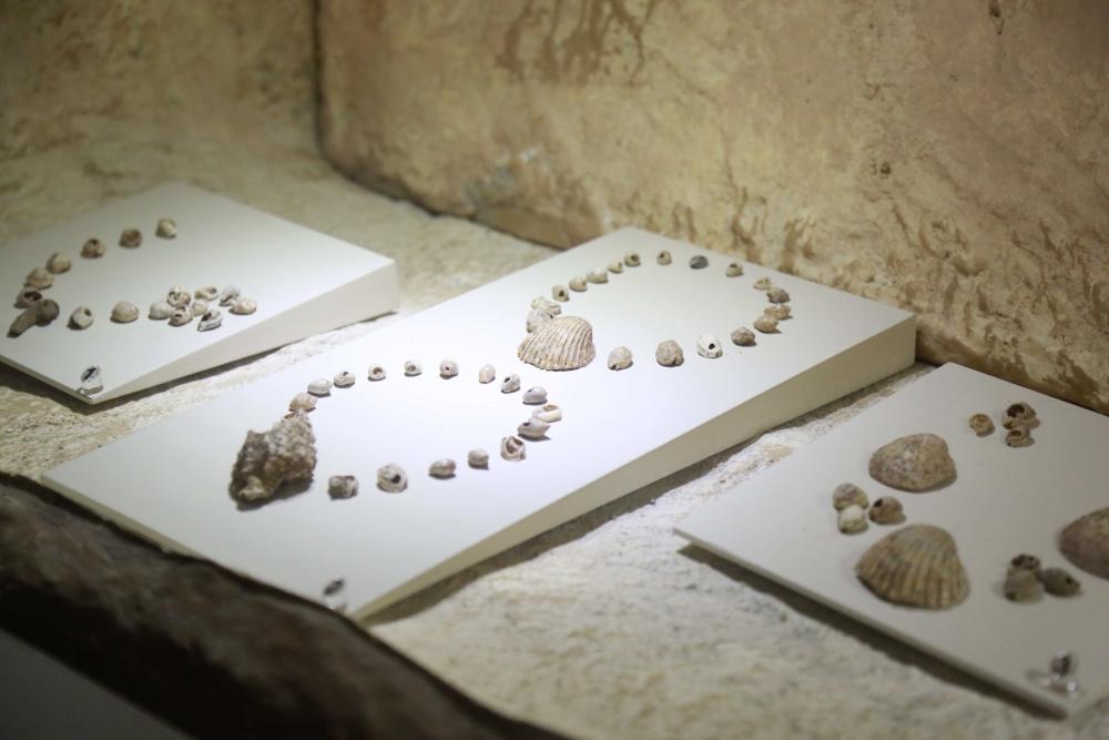 IV. Ahlâk Şûrası Hatay'da Yapıldı galerisi resim 122