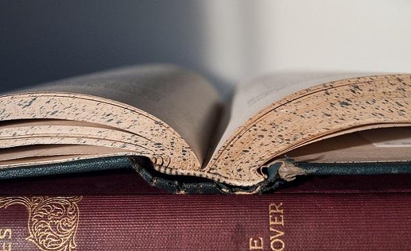 Bir kitabı yeniden okumak