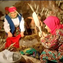 Anadolu Kültürünü Balmumu Eserler ile Tanıtım