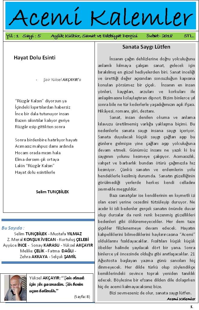 """Acemi Kalemler Dergisi 5. Sayısıyla Sanata """"Saygılı Okuru"""" Bekliyor."""