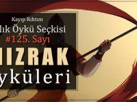 """Kayıp Rıhtım Aylık Öykü Seçkisi'nin 125. sayısı """"MIZRAK"""" temasıyla çıktı"""
