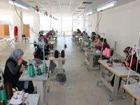 Meslekî Eğitim Üniversitesi: