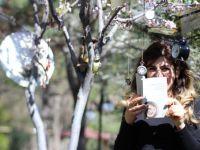 Yeni Üyelerimiz: Senem Gezeroğlu