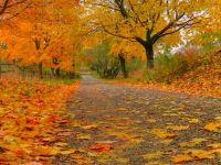 Rıdvan Canım: Hüznün Güneş Renkli Ayı Eylül...Hoş Geldin...