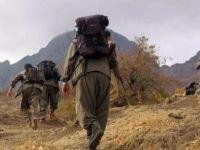 Tarkan Zengin: PKK'nın emekçi cinayetleri