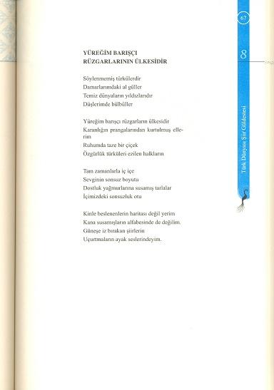 tarama0012-(2).jpg